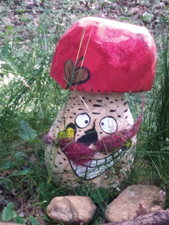 Houba - Muchomůrka Pindruše s knírem