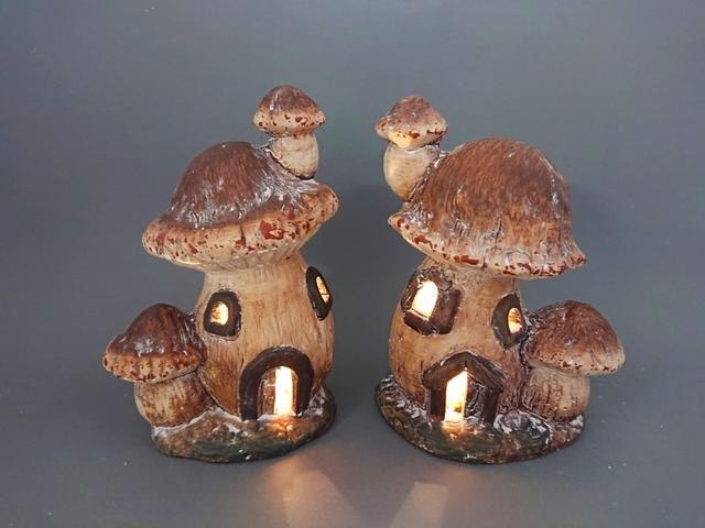 Domeček houba svítící