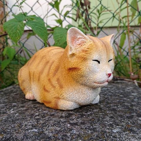 Kočka ležící zrzavá
