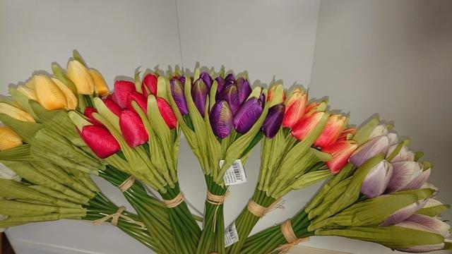 Tulipány barevné svazek sd 20ks
