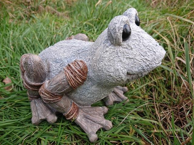 Žába dřevěný design větší