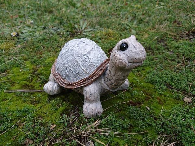 Želva dřevěný design menší