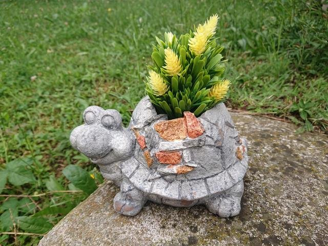 Obal želva